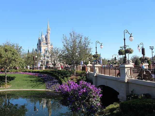 Central Florida Orlando Area